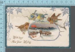 New Year -  With Best Wishes, Bird,embossé , Gaufré, Oiseaux Et Berger En Hiver - Nouvel An