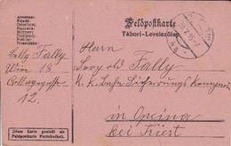 Feldpostkarte - Wien Nach K.k. Eisenbahn Sicherungs Kompagnie Opina Bei Triest - 1916 (36067) - Briefe U. Dokumente