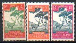 OCEANIE - Colonie Française (Nlle CALEDONIE) - 1928 - Taxe - N° 27 à 29 - (Cerf Et Niaouli) - Nouvelle-Calédonie