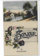 88 BUSSANG . Un Boujour , édit : D D , Années 10 , état Extra - Bussang