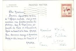 6389 - Pub AMORA - Afrique Du Sud-Ouest (1923-1990)