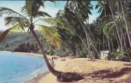 VENEZUELA---playa Caribe---voir 2 Scans - Venezuela