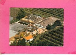 CP.  59.  SAINT  SYLVESTRE  CAPPEL.  LA  POMMERAIE.  CAFE  RESTAURANT BRASSERIE - France
