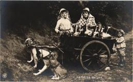 1 Fotokaart  C1910 éd NPG  Hondenkar ( Attelage De Chiens Flamand, Hund, Dog) LAITIERES Belges 2 TREKHONDEN Perfect - Dogs