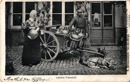 Antwerpen  1 CPA  C1900   Hondenkar ( Attelage De Chiens Flamand, Hund, Dog) LAITIERE Flamande IREKLAME Rue Gommaire 54 - Publicité
