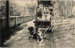Brussel 1 CPA  C1913 éd Van Den Heuvel Hondenkar Attelage De Chiens Flamand, Hund, Dog LAITIERE Flamande  2 TREKHONDEN - Dogs