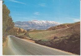 Kabylie Kabylei Kabylia Uncirculated Postcard (ask For Verso / Demander Le Verso) - Algeria