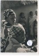 CPM GF -35650 - Lessouto  - Filenses (gros Planà Près De Cana - Lesotho