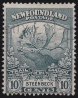 Newfoundland  .    SG   .     137        .       O      .  Gebruikt      .    /   .   Cancelled - Newfoundland