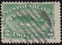 Newfoundland  .    SG   .     46      .       O      .  Gebruikt      .    /   .   Cancelled - Newfoundland