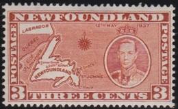 Newfoundlans    .    SG   .      258c        .     *       .     Ongebruikt    .    /      .     Mint-hinged - Newfoundland
