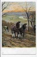 """Harrowing."" - Tuck ""Rural Life"" Series 1421 - Cultivation"