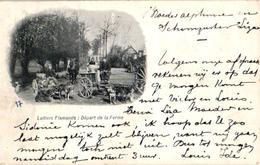 10 CPA  Anno 1900 - LATIERES Flamandes - éditeur VEO (dans Le Cliché) - Transport Canine Hondenkar Alletages De Chiens - Chiens