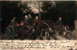 SCHAEFER A. 21  Amsterdam: Compilatie Types Vervoer In Vlaanderen Met Hond : Melkboerinnen, Groenten, Ambacht Anno 1902. - Hunde