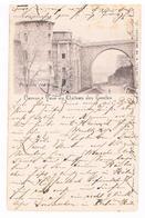 CPA Pionnière Dos Non Divisé : NAMUR Citadelle - Tour Du Château Des Comtes 1899 - Namur