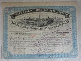 Compagnie Franco-Américaine Des Bassins Pétrolifères De Ste Marie - Pétrole