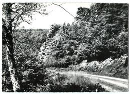 CPSM 58 (grand Format)  DUN LES PLACES Rochers Route De St Brisson - France