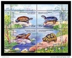 Russia 2017 Mih. 2429/32 (Bl.241) Fauna. Turtles MNH ** - 1992-.... Fédération