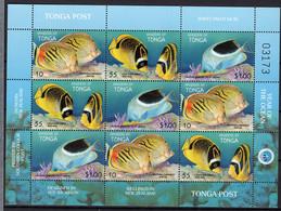 1998 - TONGA - Mi. Nr. 1536/1538 - NH - (UP121.13) - Tonga (1970-...)