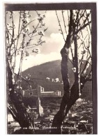 15994   -   SPOLETO  /    VIAGGIATA - Italie