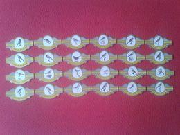 SERIE COMPLETA DE 24 VITOLAS CIGAR BANDS ROYAL FLUSH EUROPESE WILDZANG BIRDS PÁJAROS BIRD PÁJARO OISEAU VER FOTO/S Y DES - Vitolas (Anillas De Puros)