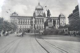 Praha Musee National  Avec Timbre - Czech Republic