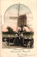 1 Postkaart 1902 - Zeer Grote Molen  éd J. H. Schaefer Amsterdam N° B 9 - Hondenspannen Hondenkar - Mooie Staat Zie Scan - Honden