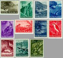 Suriname 1953 Inheemse Voorstellingen - NVPH 297 MH* Ongestempeld, Hinged - Suriname ... - 1975