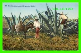 MEXICO - FLACHIQUEROS EXTRAYENDO PUIQUE - ANIMATED -  EDITOR E. MARTIN - - Mexique