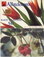 TARJETA TELEFONICA DE ALBANIA. 05.01 (066) - Albania