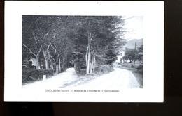 BT11 Ginoles Avenue De L'entrée De L'établissement - Autres Communes