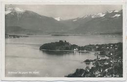 1941 Halbinsel Au ZH Gegen Die Alpen - ZH Zurich