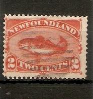 NEWFOUNDLAND 1887 2c SG 51 FINE USED Cat £7.50 - Newfoundland