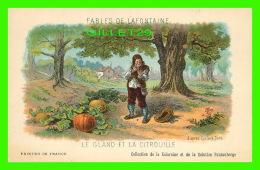 FABLES DE LAFONTAINE D'APRÈS GUSTAVE DORÉ - LE GLAND & LA CITROUILLE - COLLECTION KOLARSINE & SOLUTION PATTAUBER - Contes, Fables & Légendes