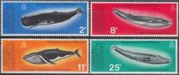 British Antarctic Territory 1977 Michel 64 - 67 Neuf ** Cote (2005) 47.00 Euro Baleines - Territoire Antarctique Britannique  (BAT)