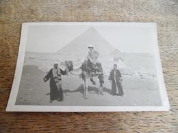 CPA Photo D'Egypte, Européen Sur Un Chameau Accompagné De Deux Egyptiens, Début De Siècle Je Pense - Pyramides