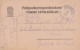 Feldpostkarte - Blumau A. D. Wild Nach K.k. Landsturm Eisenbahn Sicherungs Komp Opcina Bei Triest - 1916 (36073) - Briefe U. Dokumente