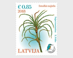 H01 Latvia 2018 Delicate Naiad Dating From The Ice Age MNH Postfrisch - Lettland