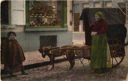 1 Postkaart Litho Couleurs 1903 - Orgue De Barbarie - Transport Canine à Bruges - Attelage Par Chien RARE - Plié Coin - Straßenhandel Und Kleingewerbe