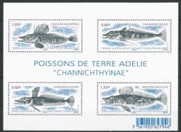 TAAF 2015 - Poissons De Terre Adelie : Channichthyianae - Blocs-feuillets