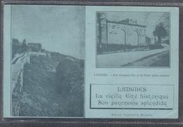 Carte Postale 52. Langres  Très Beau Plan - Langres