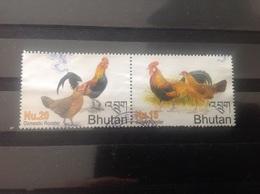 Bhutan - Complete Set Jaar Van De Haan 2005 - Bhutan