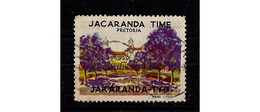 ANTIQUE SOUTH AFRICA CINDERELLA VIGNETTE JACARANDA TIME TREES PRETORIA USED - Arbres