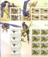 Block 8 Margin -2008 Taiwan Conservation Birds Stamps  -Blue Magpie Bird Forest Tung Flower Bug WWF - W.W.F.