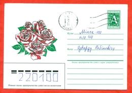 Belarus 1996. Roses. Envelope With Printed Original Stamp .Really Passed The Mail. - Belarus