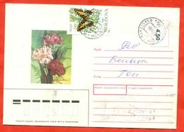 Moldova 1993. Mahaon. Envelope Really Passed The Mail. - Moldova