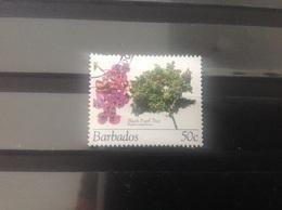 Barbados - Bomen En Bloesems (50) 2005 - Barbados (1966-...)