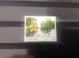 Barbados - Bomen En Bloesems (1) 2005 - Barbados (1966-...)