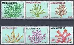 1982 MOZAMBIQUE 902 D-J** Algues - Mozambique