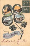 44-MAUVES- JE PORTE BONHEUR- SOUVENIR DE MAUVES - Mauves-sur-Loire